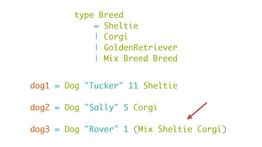 "dog1 = Dog ""Tucker"" 11 Sheltie dog2 = Dog ""Sall..."