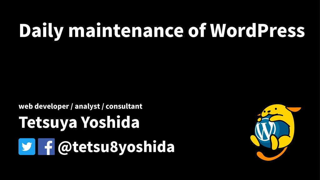 Daily maintenance of WordPress web developer / ...