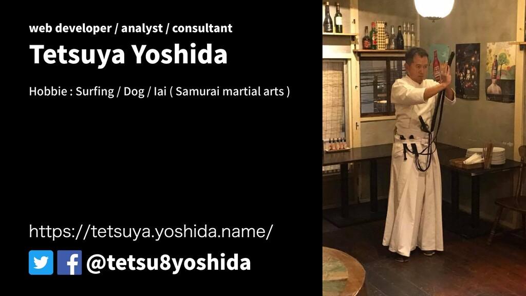 web developer / analyst / consultant Tetsuya Yo...