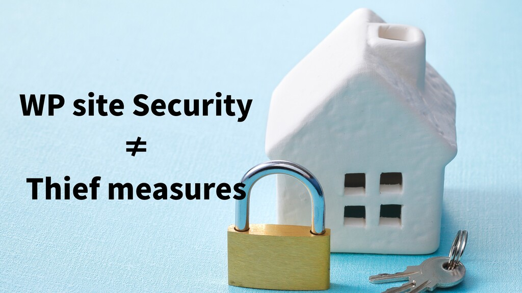 WP site Security ≠ Thief measures