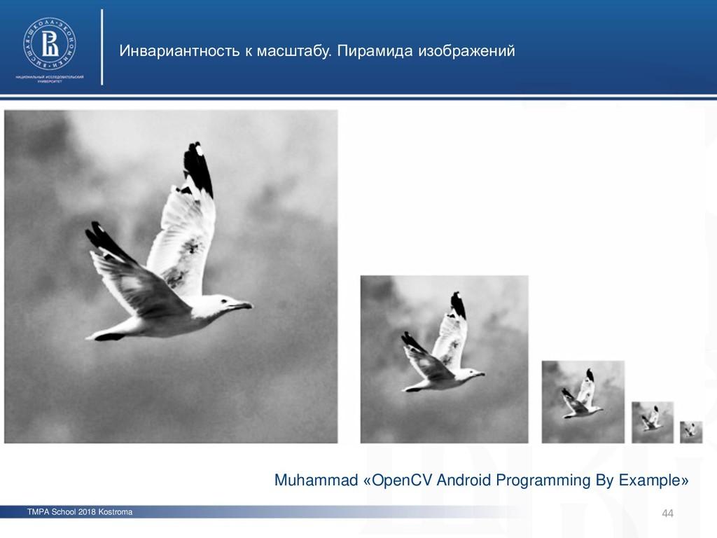 TMPA School 2018 Kostroma Инвариантность к масш...