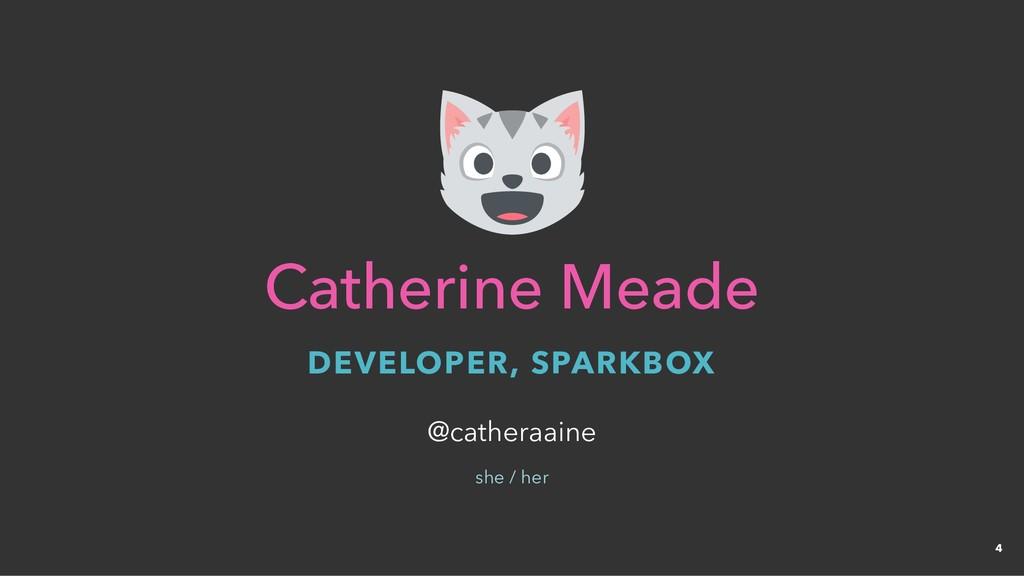 Catherine Meade Catherine Meade DEVELOPER, SPAR...