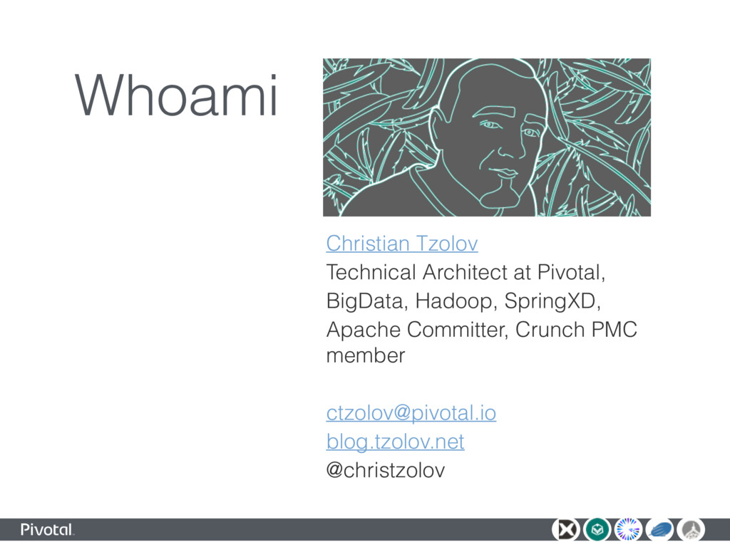 Whoami Christian Tzolov Technical Architect at ...