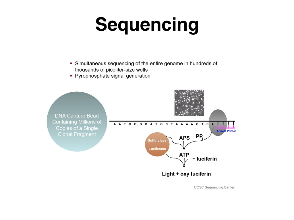 Sequencing UCSC Sequencing Center DNA Capture B...