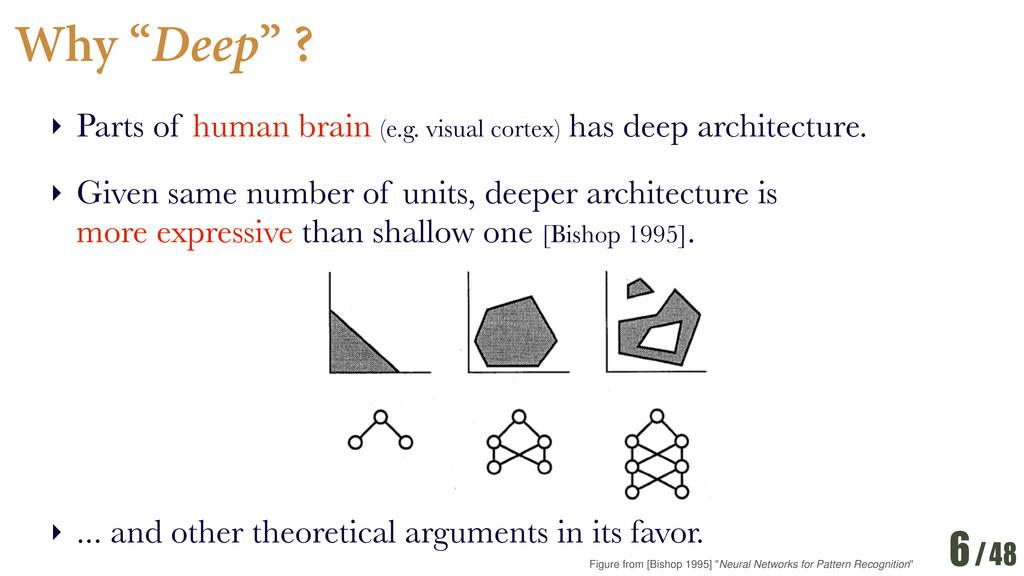 "/48 Why ""Deep"" ? ‣ Parts of human brain (e.g. v..."