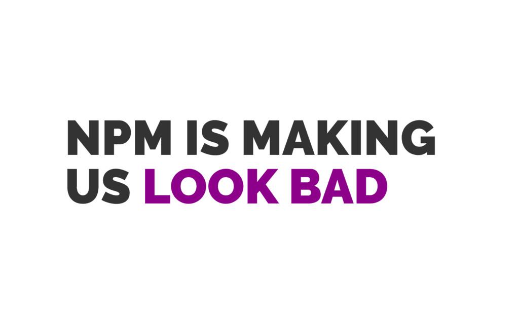 NPM IS MAKING US LOOK BAD