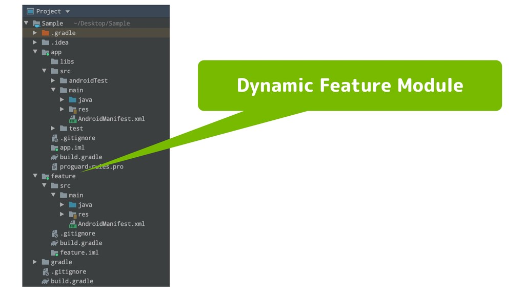 Dynamic Feature Module
