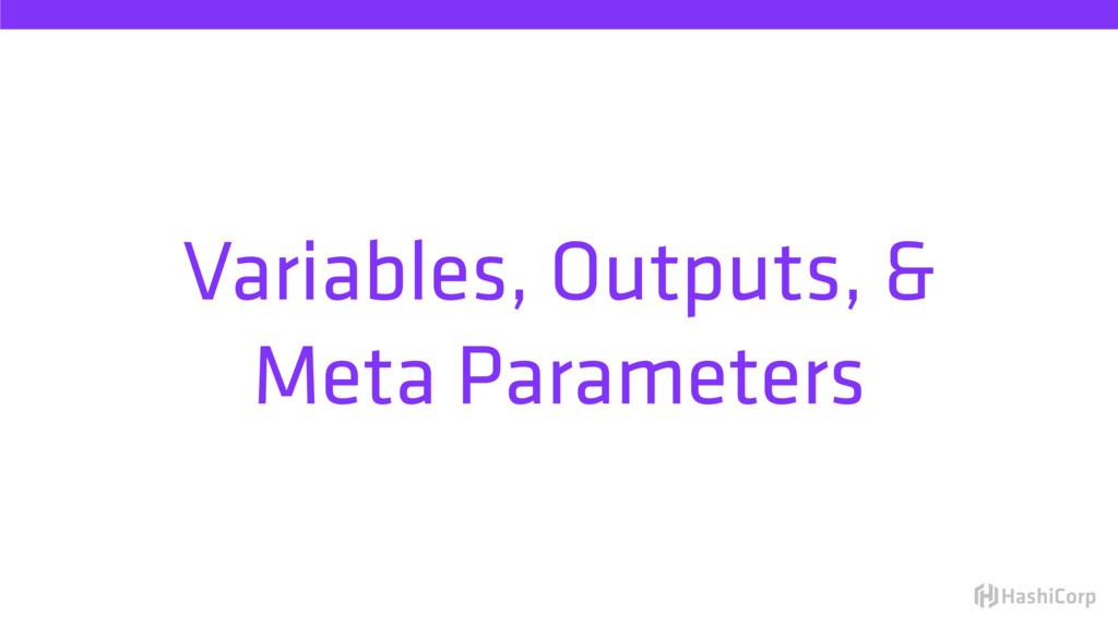 Variables, Outputs, & Meta Parameters