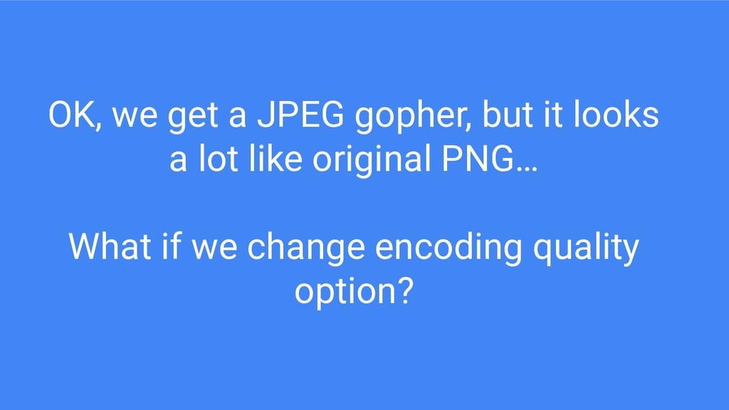 OK, we get a JPEG gopher, but it looks a lot li...