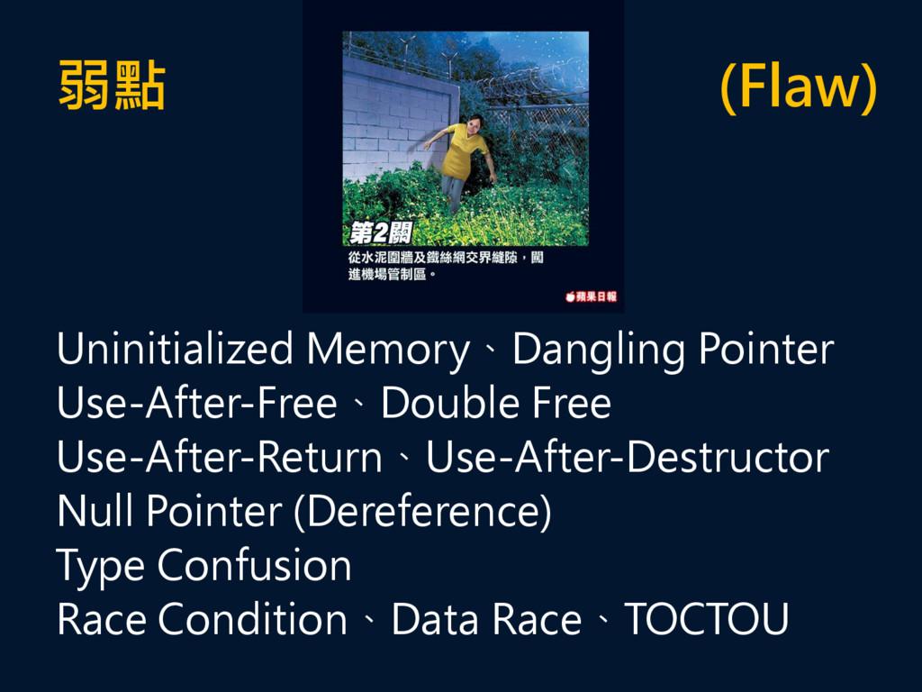 弱點 (Flaw) Uninitialized Memory、Dangling Pointer...
