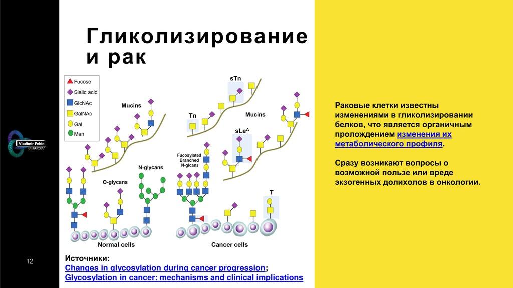 12 Гликолизирование и рак Источники: Сhanges in...