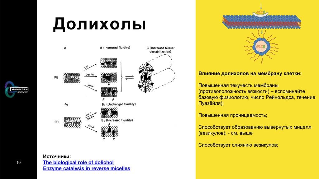 10 Долихолы Влияние долихолов на мембрану клетк...