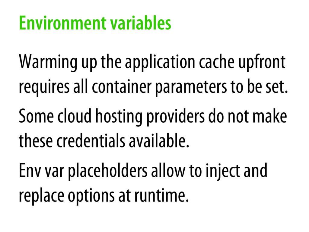 Environment variables Warming up the applicatio...