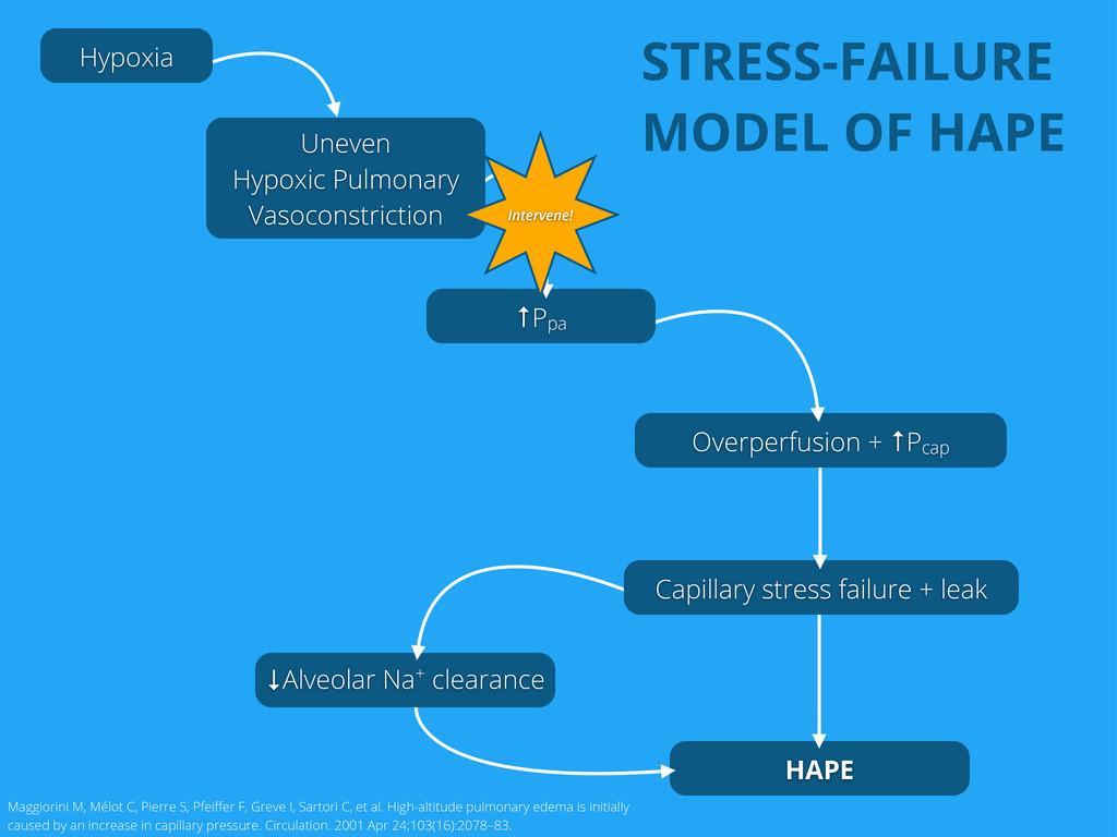 HAPE ↓Alveolar Na+ clearance Capillary stress f...