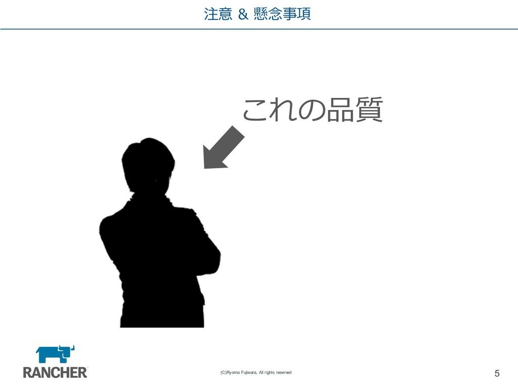 注意 & 懸念事項 5 (C)Ryoma Fujiwara, All rights reser...
