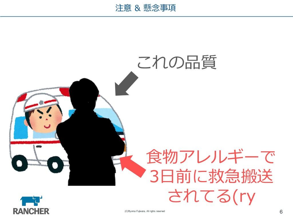 注意 & 懸念事項 6 (C)Ryoma Fujiwara, All rights reser...