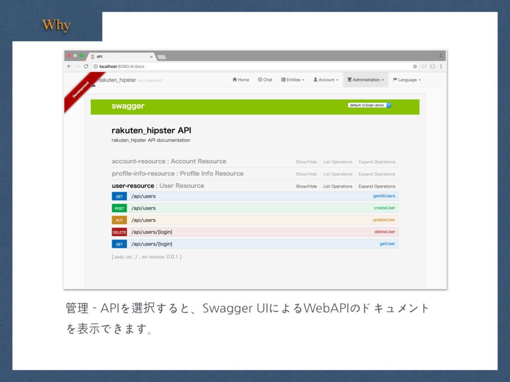 Why 管理 - APIを選すると、Swagger UIによるWebAPIのドキュメント を...
