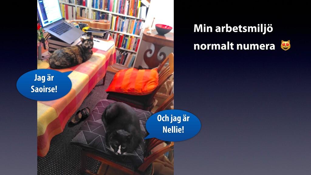 Min arbetsmiljö normalt numera 😻 Och jag är Nel...