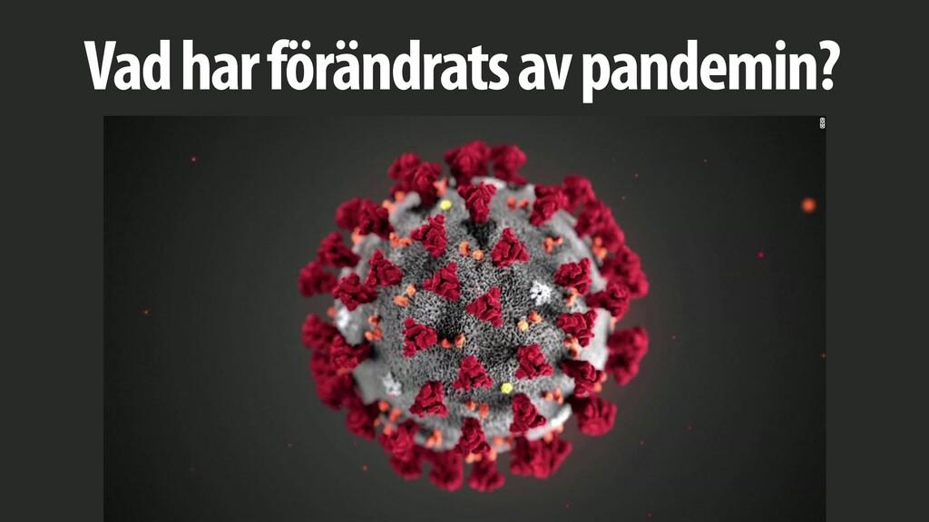 Vad har förändrats av pandemin?