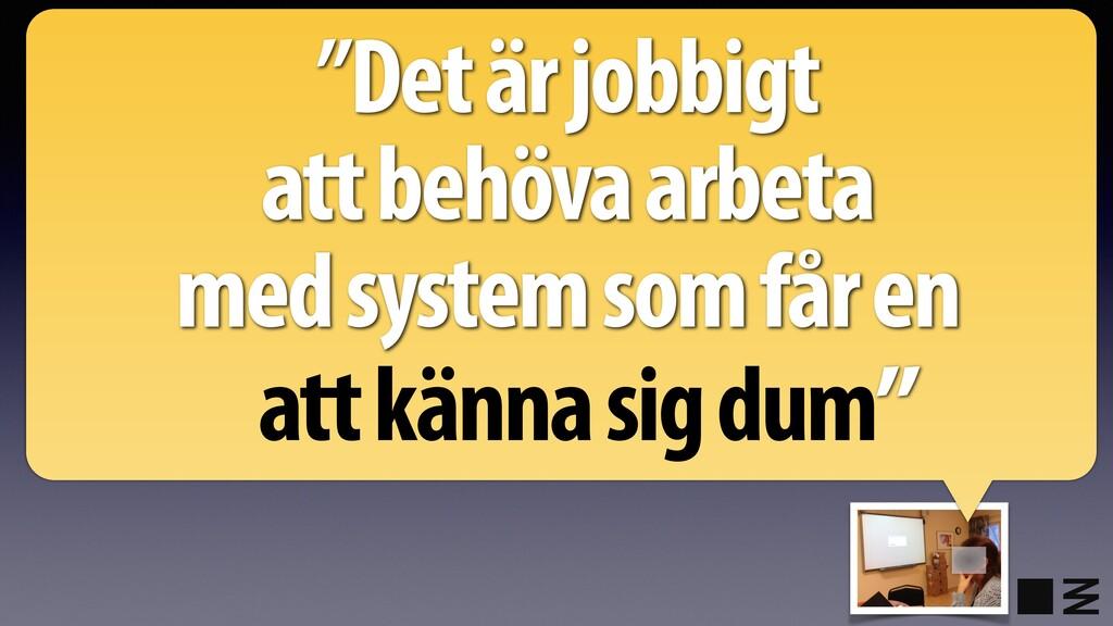"""""""Det är jobbigt att behöva arbeta med system so..."""
