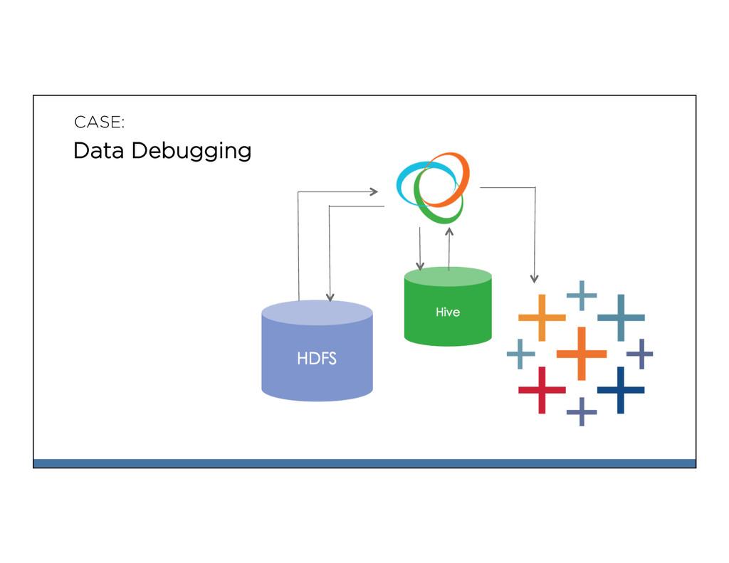 CASE: Data Debugging
