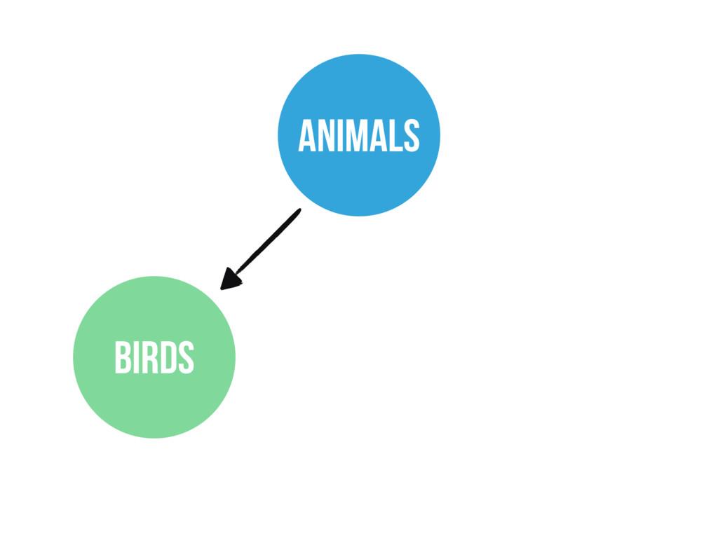ANIMALS BIRDS