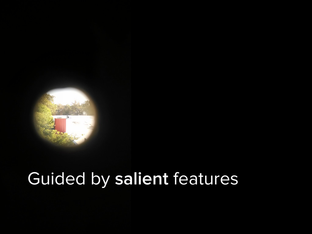 Guided by salient features
