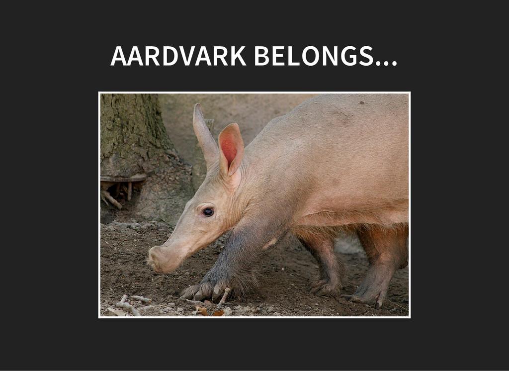 AARDVARK BELONGS...