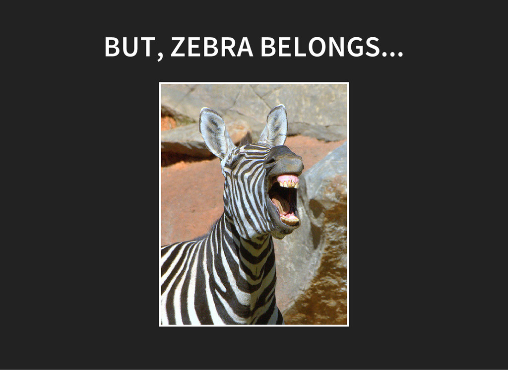 BUT, ZEBRA BELONGS...