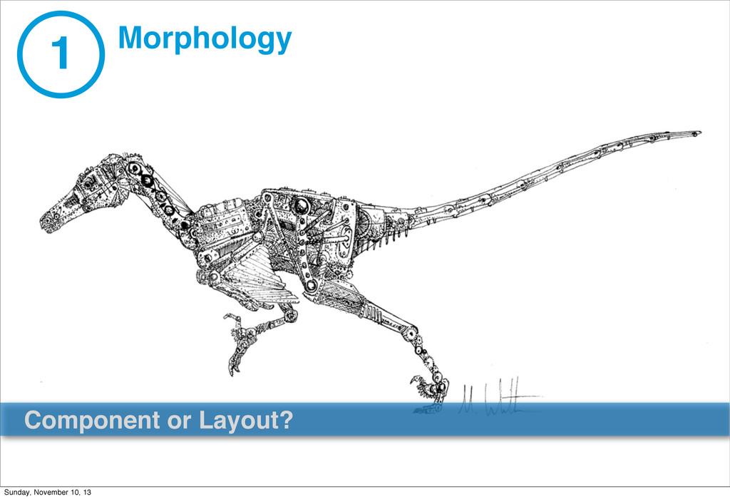 1 Morphology Component or Layout? Sunday, Novem...