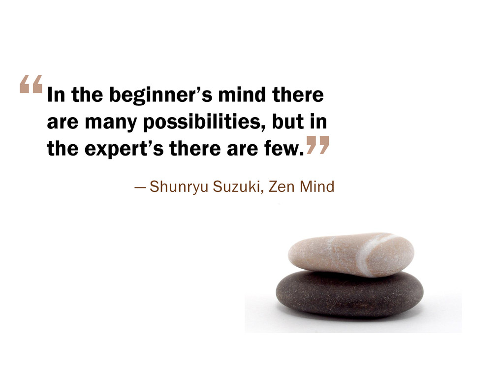 In the beginner's mind there are many possibili...