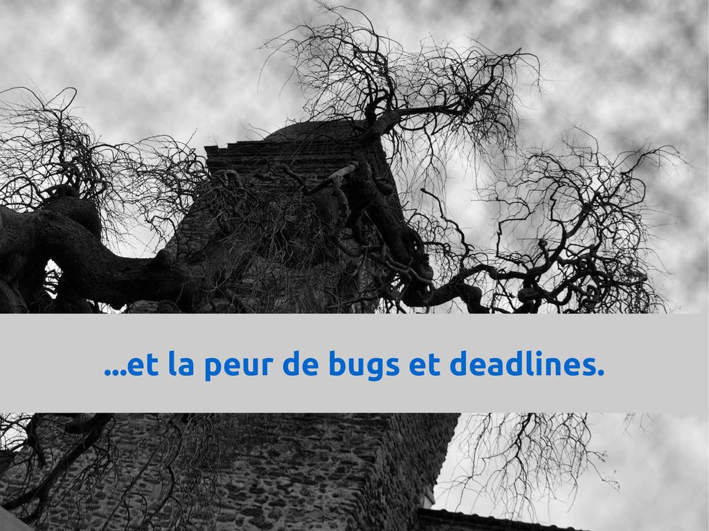 ...et la peur de bugs et deadlines.
