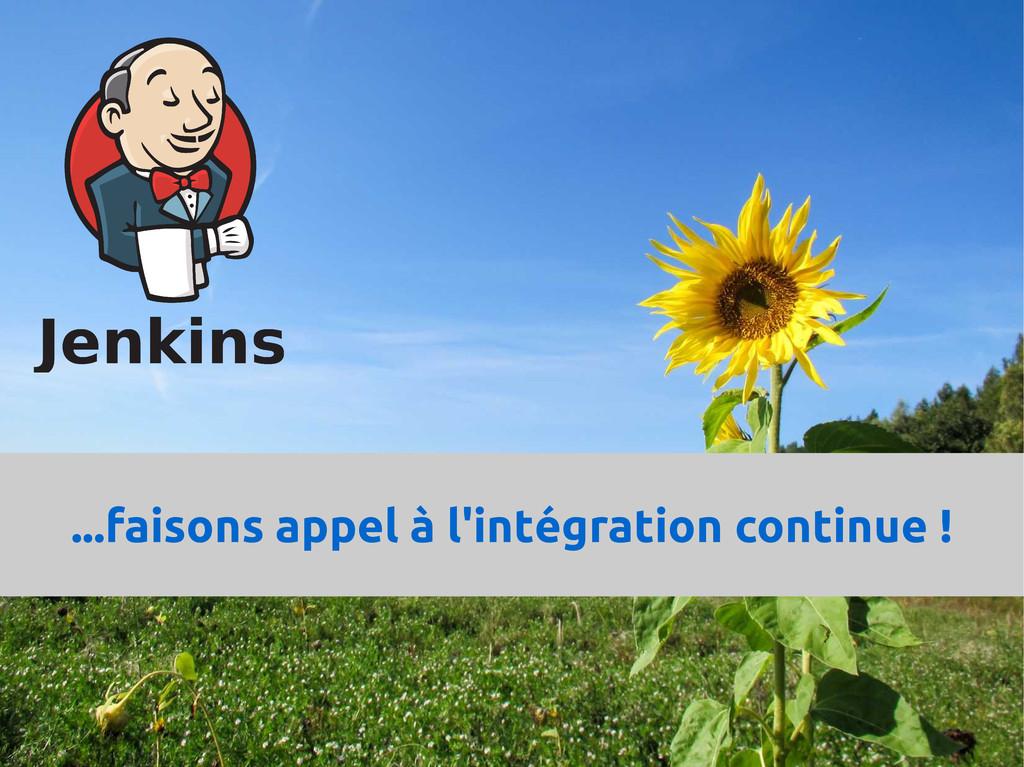 ...faisons appel à l'intégration continue !