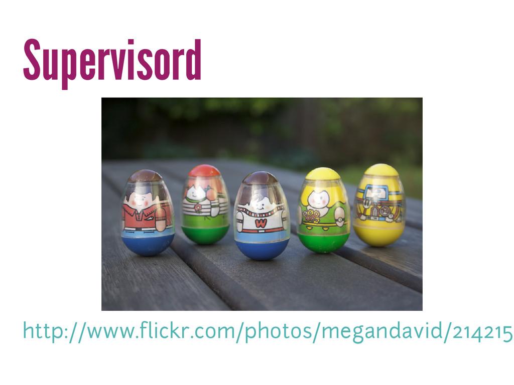Supervisord http://www.flickr.com/photos/megand...