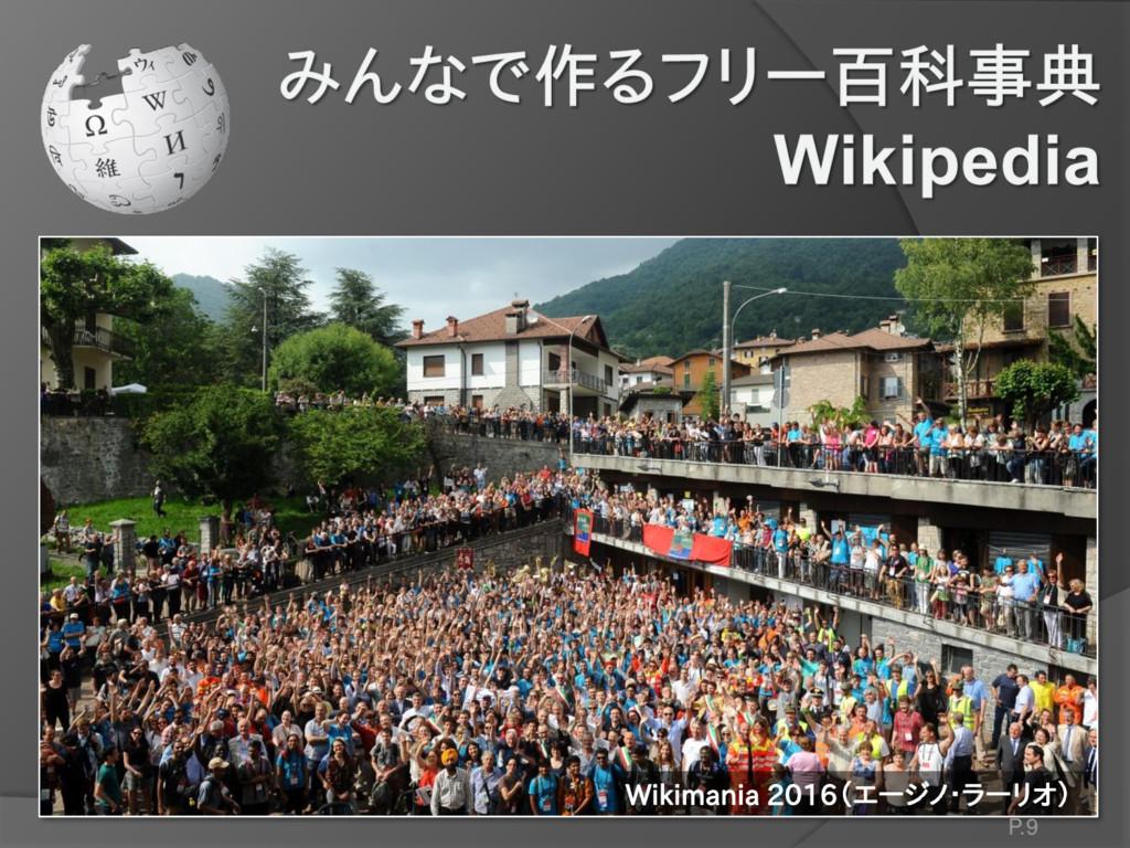 Wikimania 2016(エージノ・ラーリオ) P.9