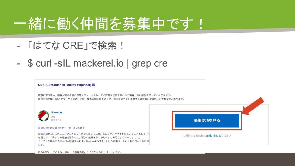 一緒に働く仲間を募集中です! - 「はてな CRE」で検索! - $ curl -sIL ma...