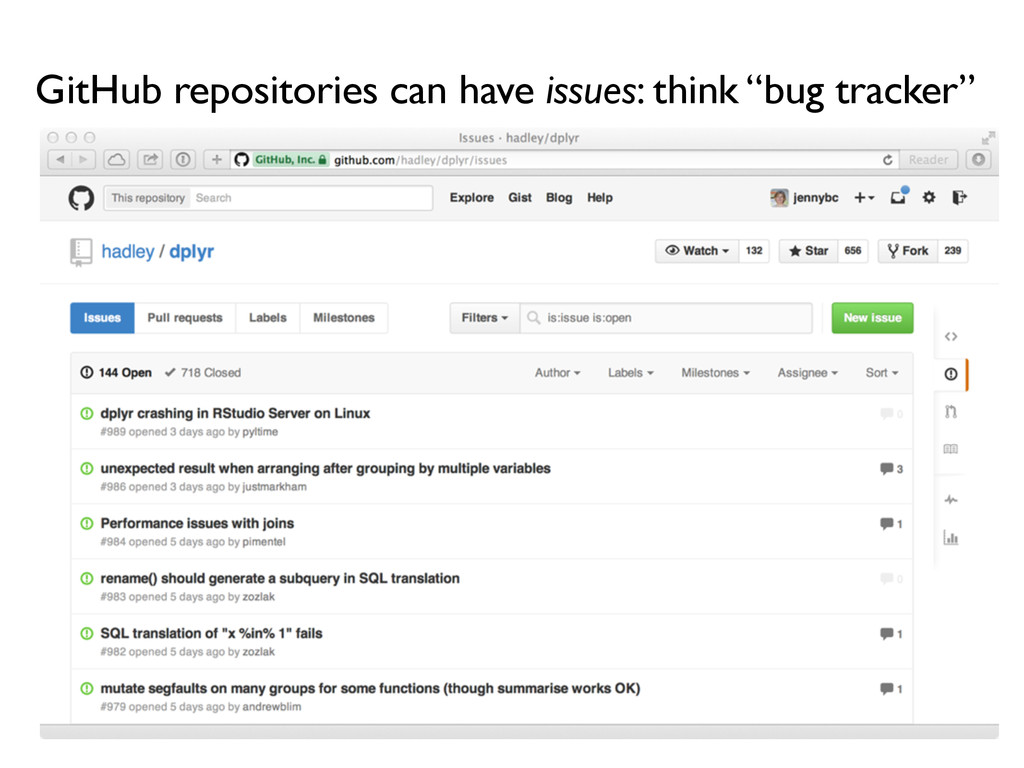 """GitHub repositories can have issues: think """"bug..."""