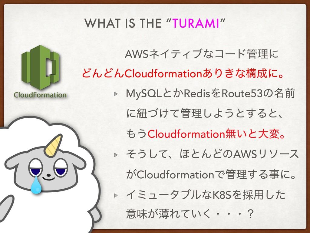 "WHAT IS THE ""TURAMI"" AWSωΠςΟϒͳίʔυཧʹ MySQLͱ͔Red..."