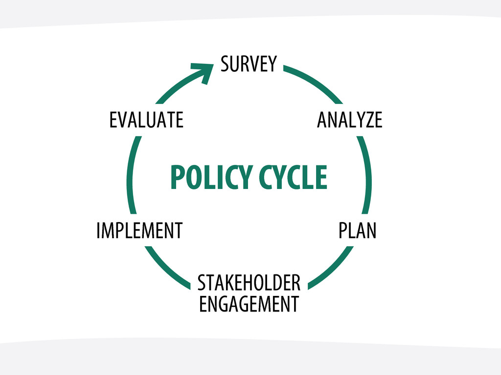 POLICY CYCLE SURVEY ANALYZE PLAN STAKEHOLDER EN...