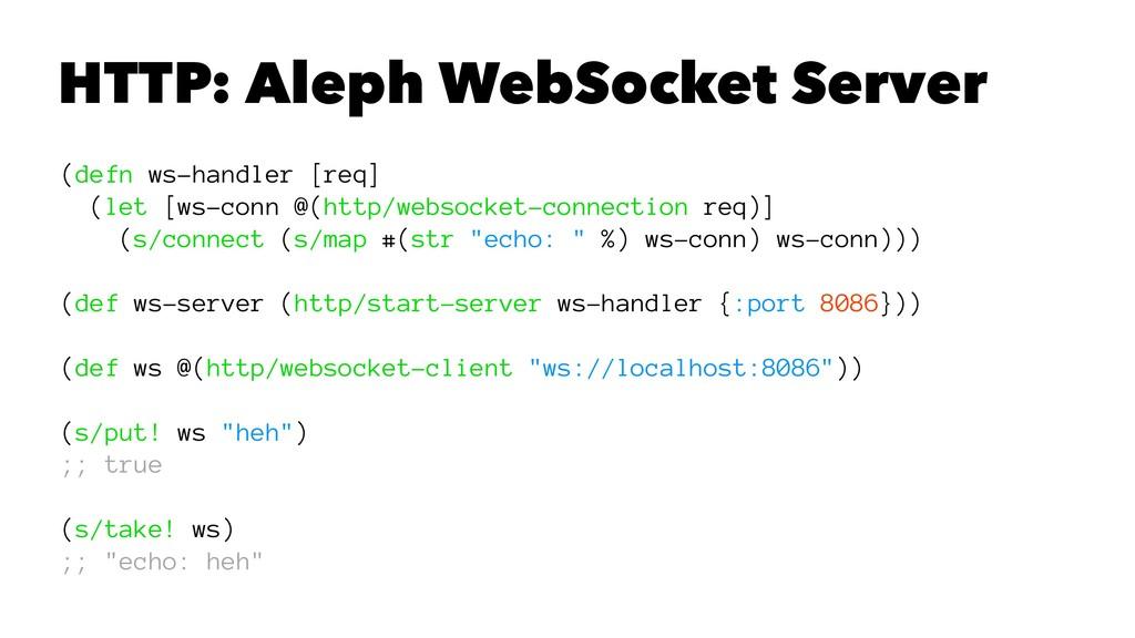 HTTP: Aleph WebSocket Server (defn ws-handler [...