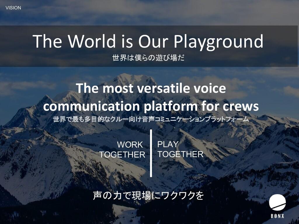 VISION The most versatile voice communication p...