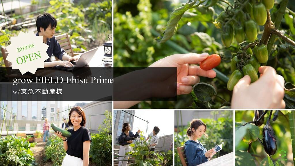 grow FIELD Ebisu Prime w /東急 不 動産様