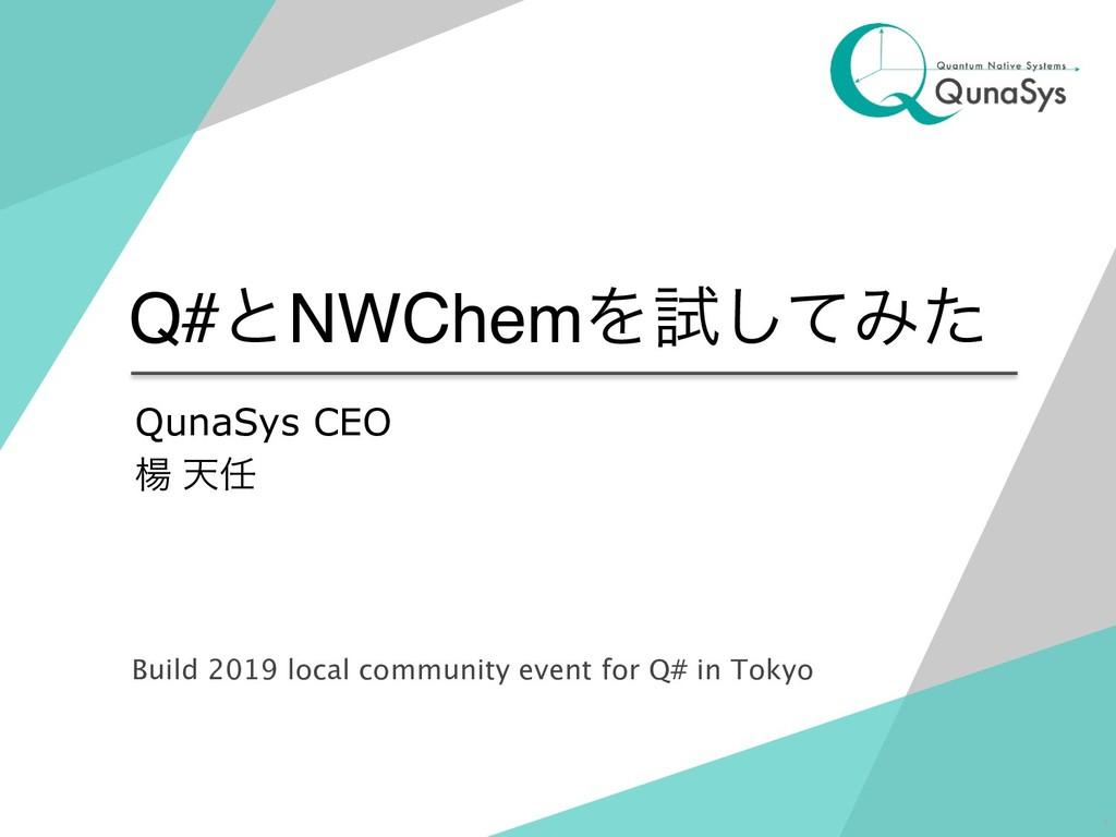Q#ͱNWChemΛࢼͯ͠Έͨ QunaSys CEO ༶ ఱ !1 Build 2019 ...