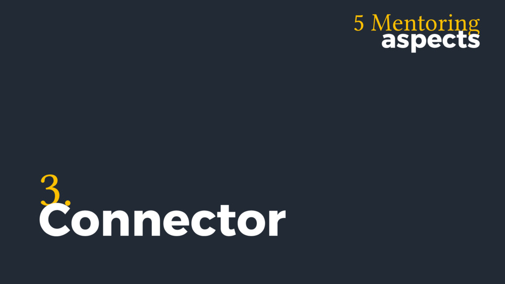 5 Mentoring aspects 3. Connector