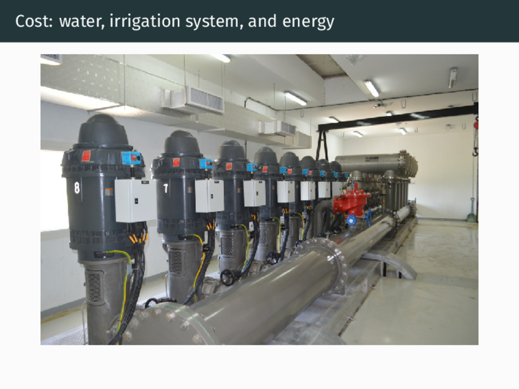 Cost: water, irrigation system, and energy
