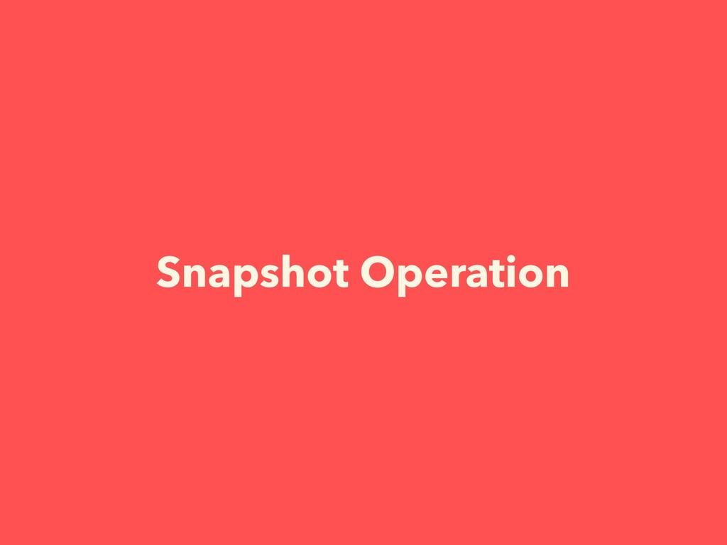Snapshot Operation