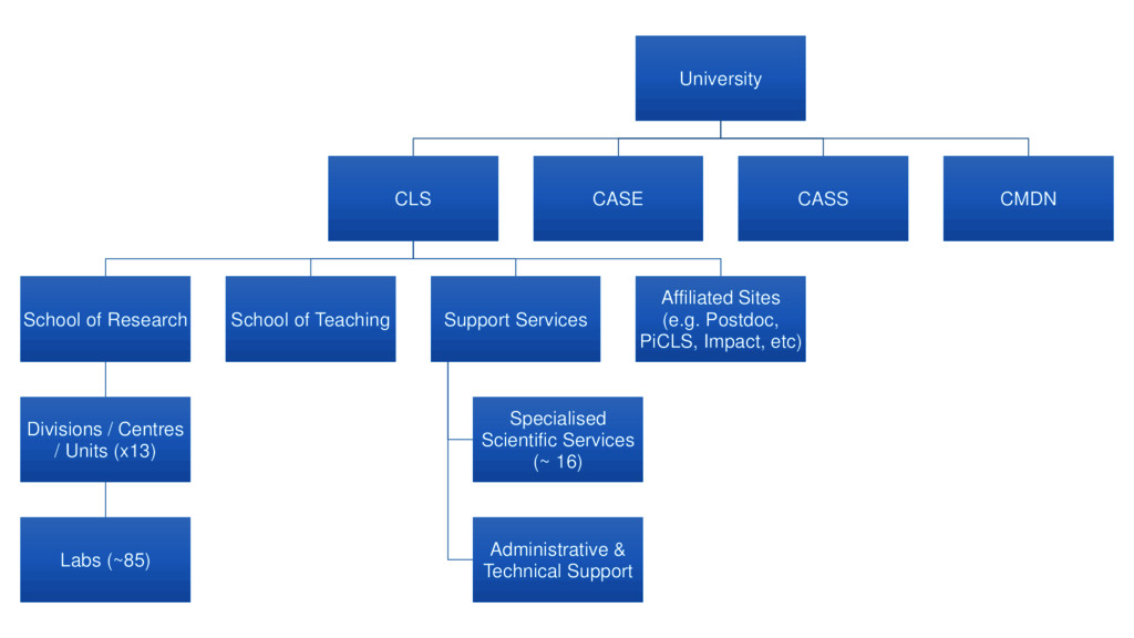 University CLS School of Research Divisions / C...