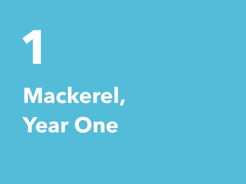 1 Mackerel, Year One