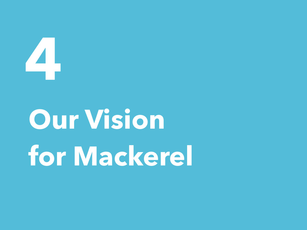 4 Our Vision for Mackerel