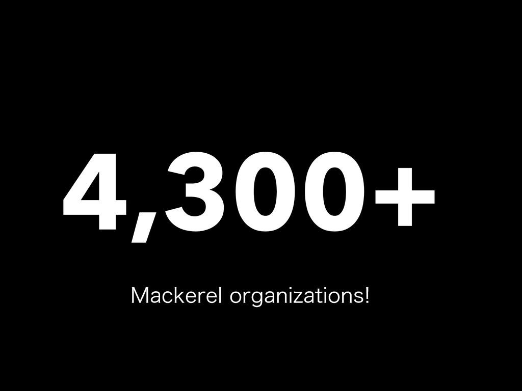 4,300+ .BDLFSFMPSHBOJ[BUJPOT
